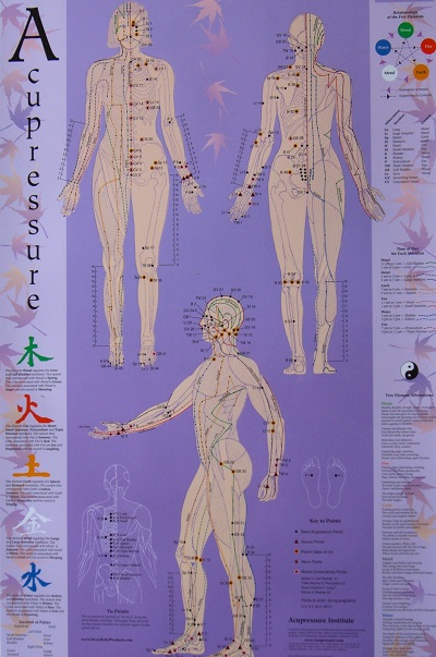 Acupressure Meridian Chart By Michael Gach