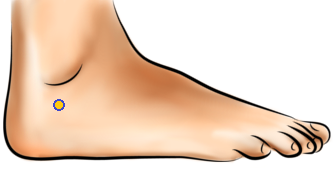Acupressure Point - Bladder 62