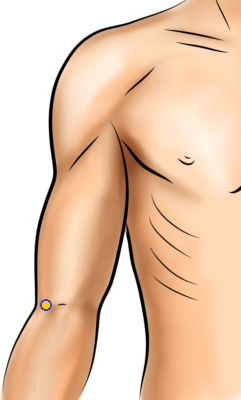 Acupressure Point - Large Intestine 11