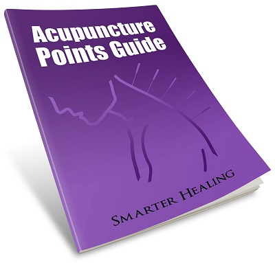 Gallbladder Meridian Acupuncture Points – Smarter Healing