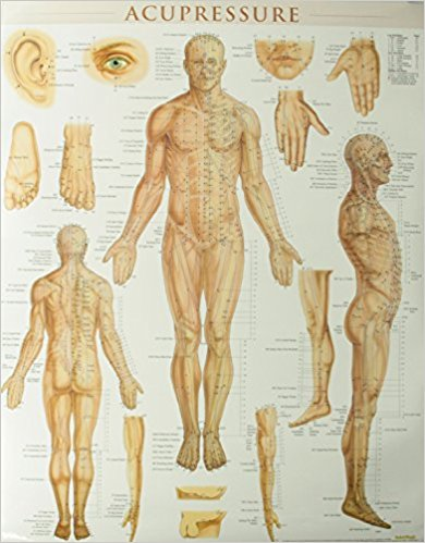 Acupressure chart reviews