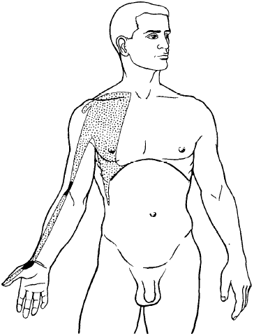 Lung Meridian Acupuncture Points