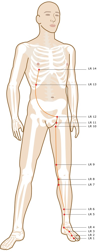 Acupuncture Points On Your Legs & Feet – Smarter Healing