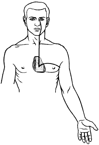 Heart Meridian Acupuncture Points