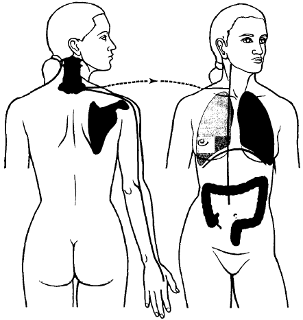 Large Intestine Meridian Acupuncture Points